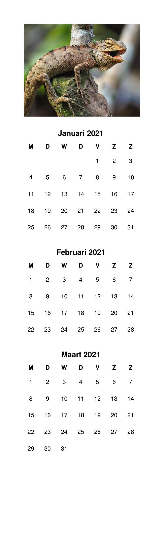 Ontwerp inspiratie: Kalender layouts